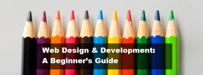 web design & development a beginner's guide