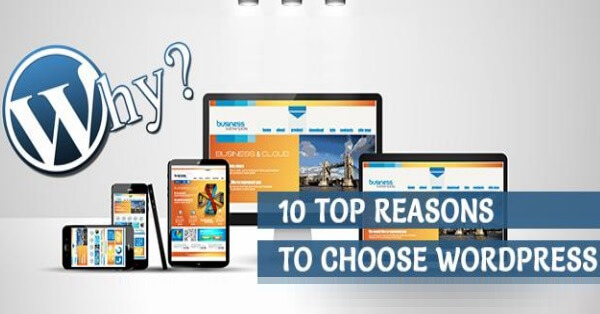 10 reasons to choose wordpress to make your own website
